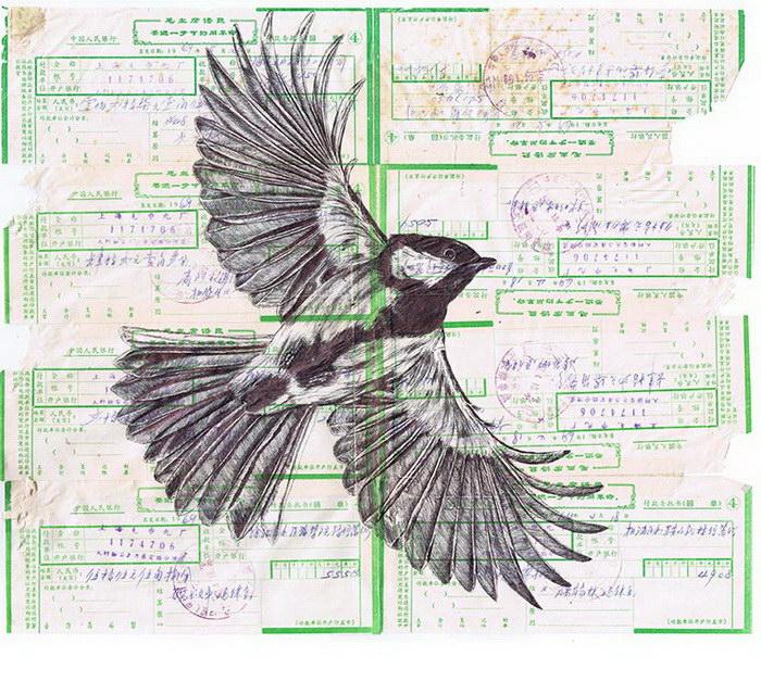 Птицы Mark Powell