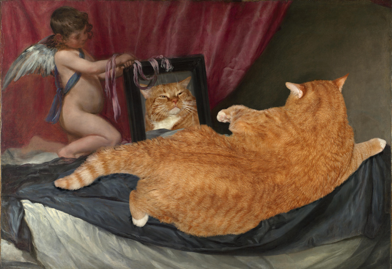Роль кота в искусстве