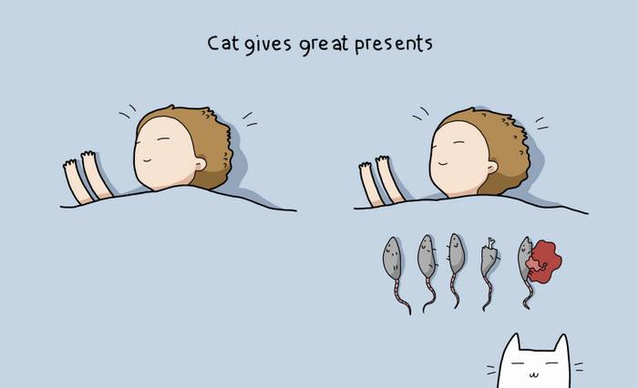 10 причин завести себе кошку