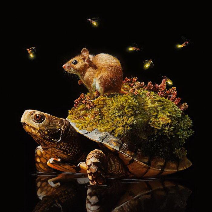 Черепашьи экосистемы: работы Lisa Ericson