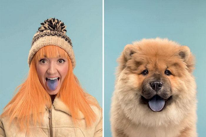 Собаки и их владельцы: смешной проект Gerrard Gethings