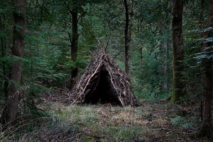 Удивительный лесной арт Ellie Davies