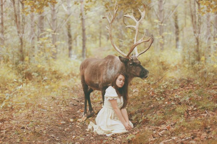 Фотографии с животными Катерины Плотниковой