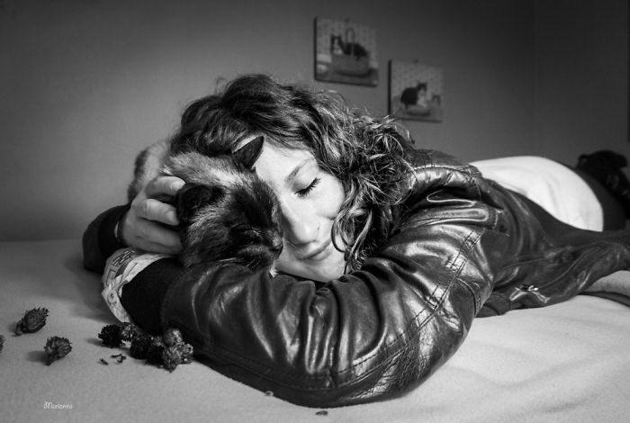 Счастье котов в фотографиях Marianna Zampieri