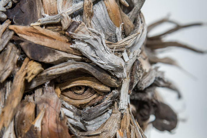 Деревянные портреты людей Bennett Ewing