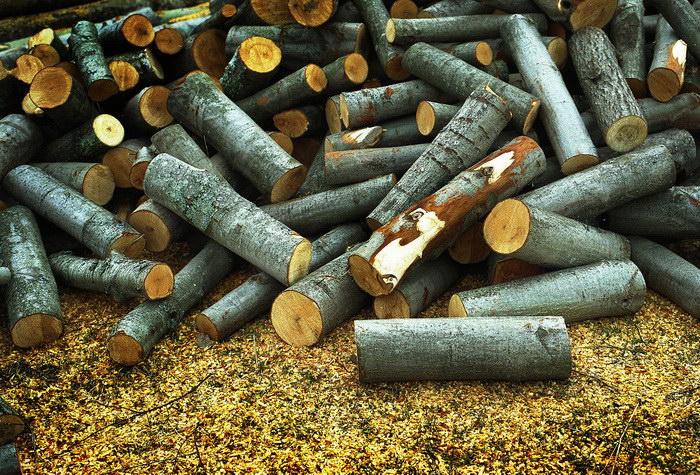 Купить дрова в Тюмени