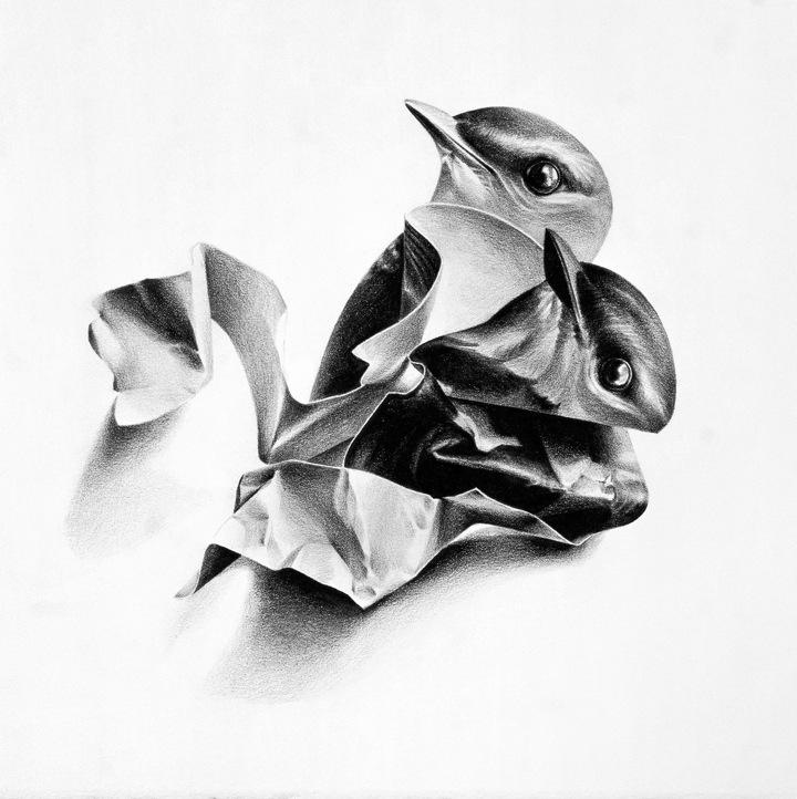 Рисунки птиц Christina Empedocles