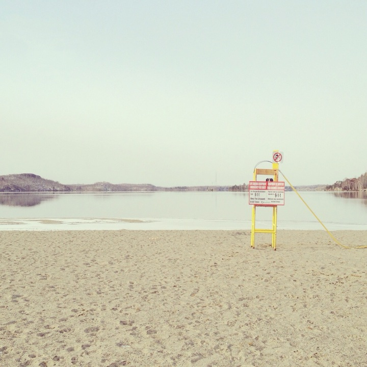 Найди Момо: фотопроект Andrew Knapp