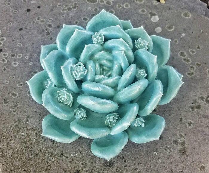 Глиняные суккуленты Owen Mann