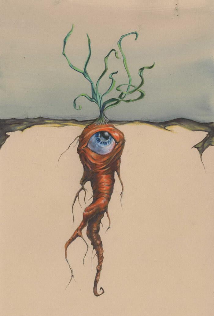 Карандашные рисунки Tim Eakin