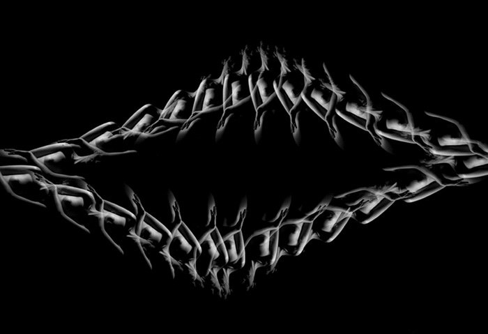 Калейдоскопические снимки PJ Reptilehouse