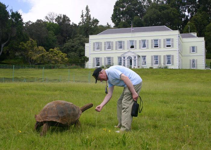 182-летняя черепаха по имени Джонатан повидала все