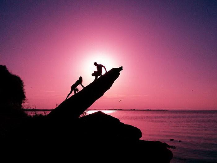 Закатное солнце, пойманное в кадр: работы мобилографов