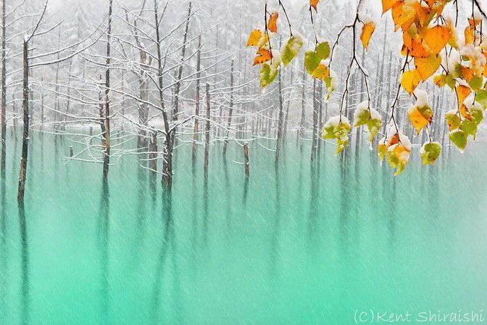 Голубой пруд в Хоккайдо