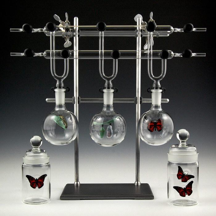 Шедевры из стекла Kiva Ford