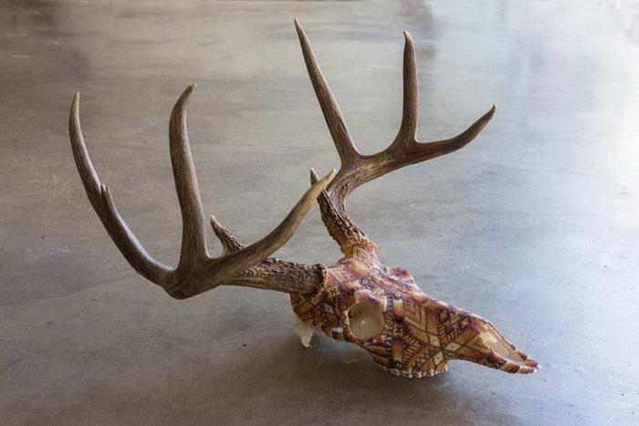 Раскрашенные черепа животных Harrison Carter Watkins