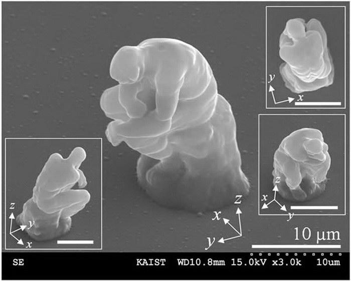 5 миниатюрных вещей, которые вы не увидите без микроскопа
