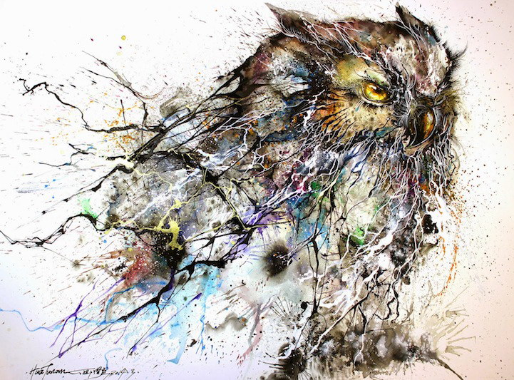 Красивая сова Hua Tunan
