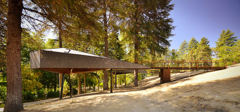 Дом в лесу под названием Tree Snake House
