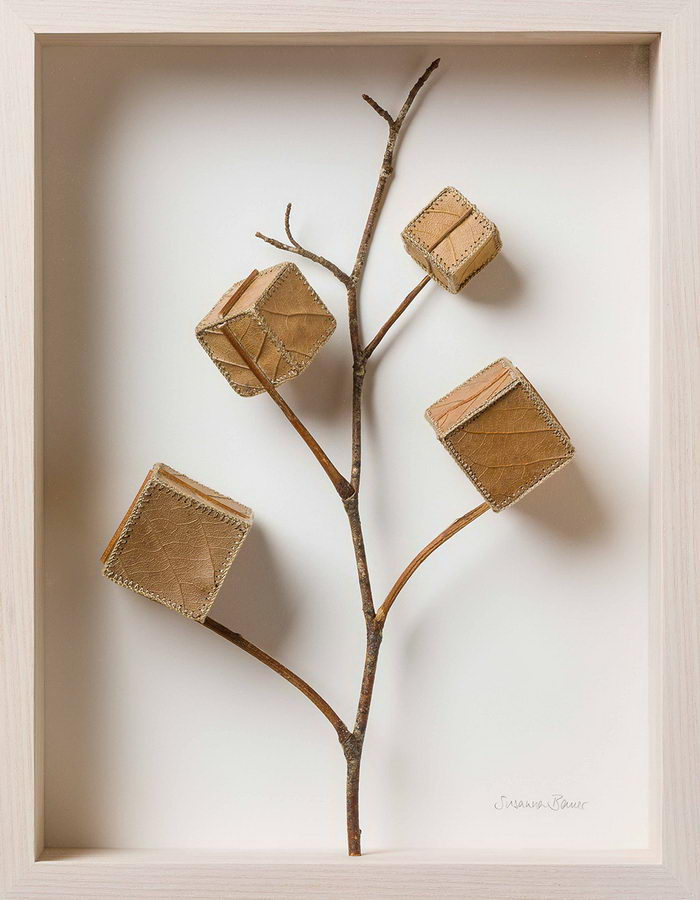 Композиции из листьев Susanna Bauer