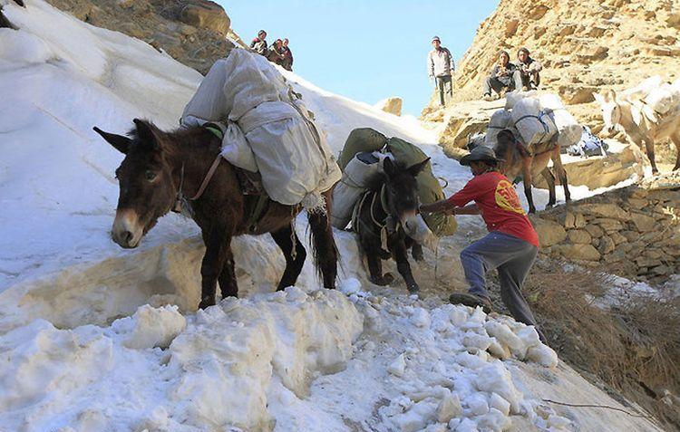 Поездка в Непал