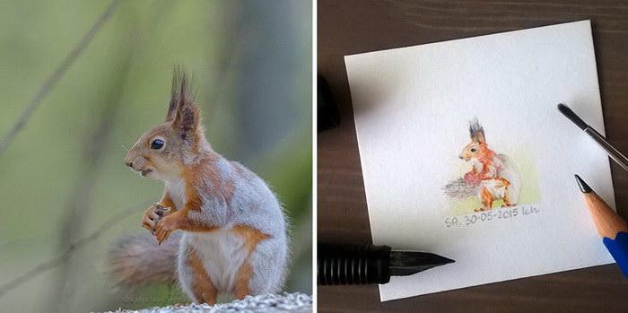 Миниатюрные рисунки Kasia Haldas