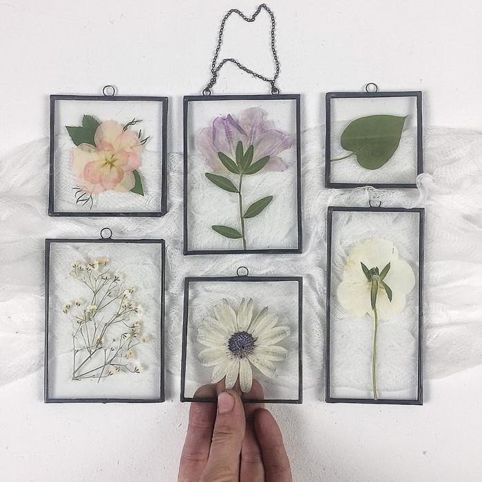 Невероятные гербарии Tatiana Lazaryuk