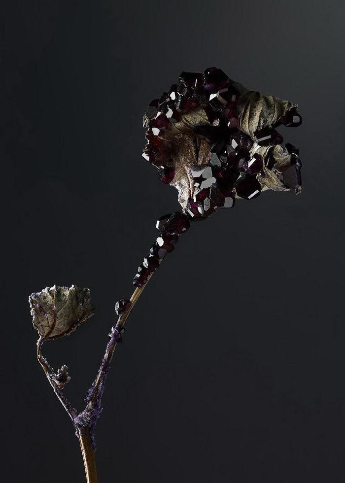 Скульптуры из кристаллов Alyson Mowat