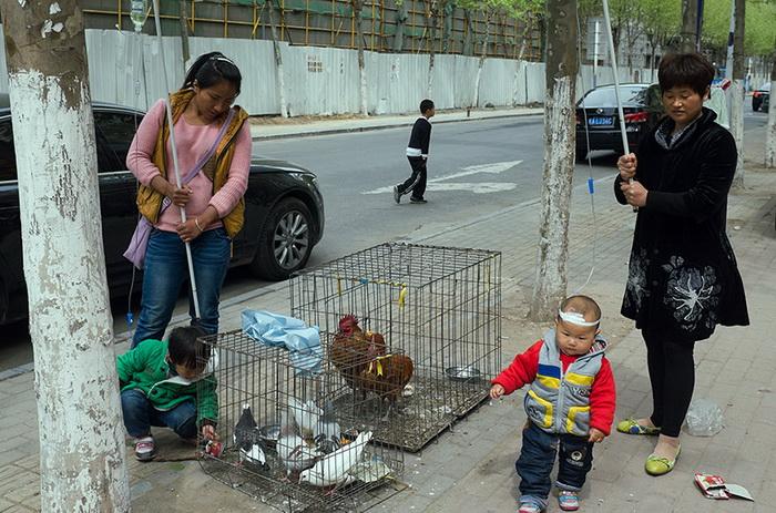 Уличная фотография Tao Liu