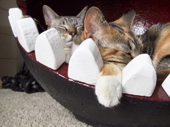 Кровать для кошки в стиле монстра из Марио