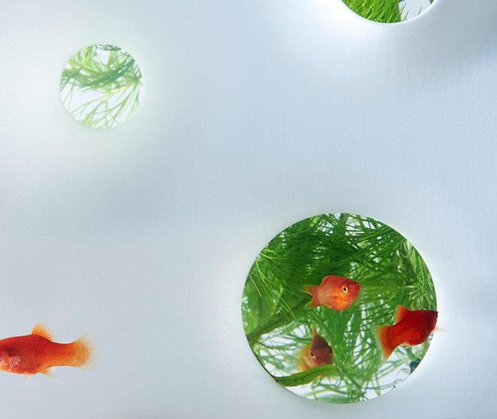 Дизайнерские аквариумы Haruka Misawa