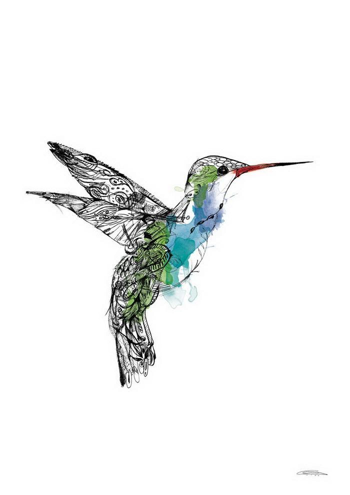 Иллюстрации Quentin Horn