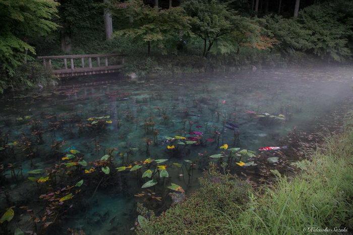 Импрессионистский пруд в горах Японии