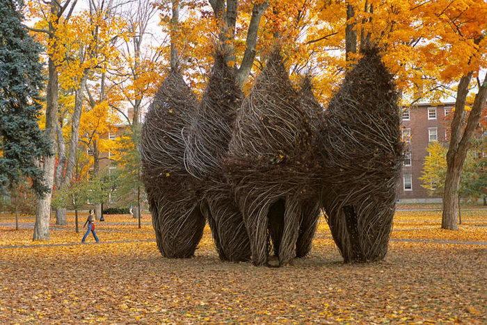 Природные скульптуры Patrick Dougherty