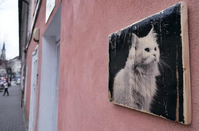 Интересный фотопроект Ania Ciotlaus