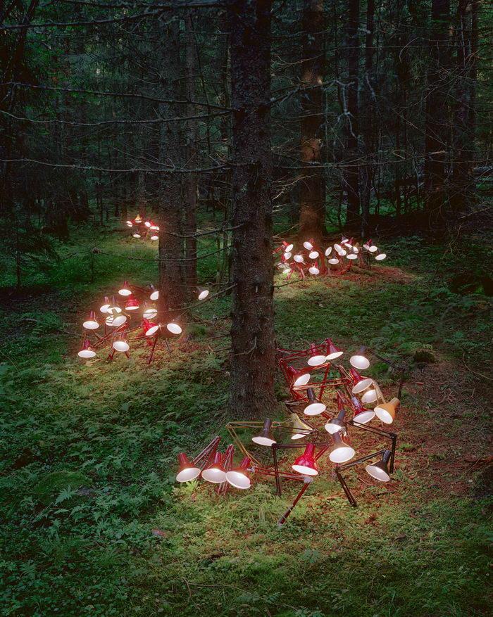 Интересные инсталляции Rune Guneriussen