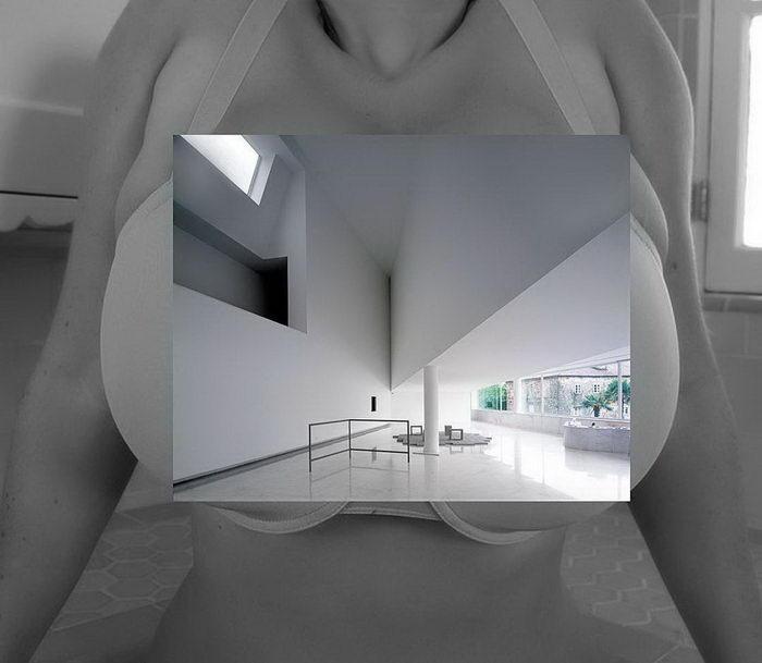Эро-архитектура: любопытный проект Scientwehst