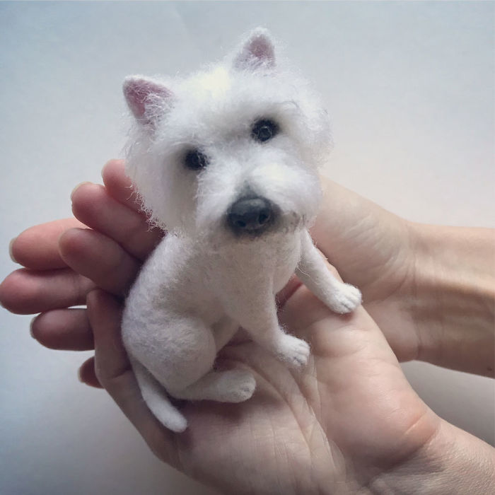 Шерстяные собачки Hanna Tsukanova