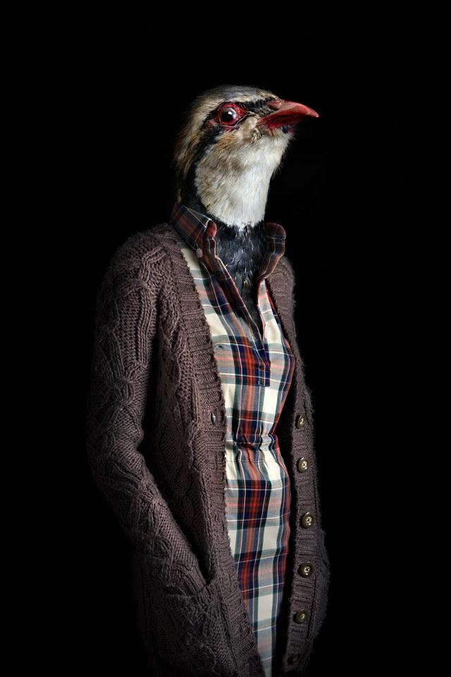 Люди-животные в фотографиях Miguel Vallinas