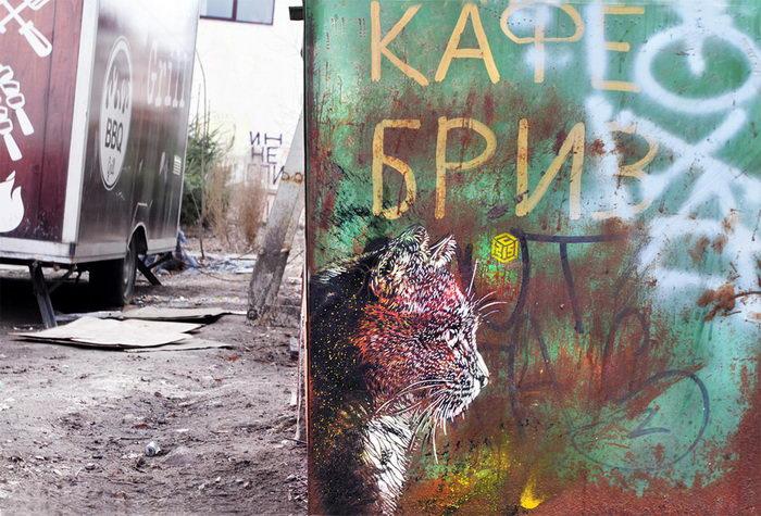 Граффити-котики французского художника C215