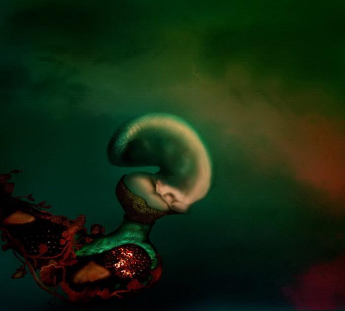 Странные картины Alberto Oliveira