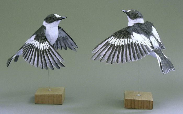 Бумажные скульптуры птиц Johan Scherft