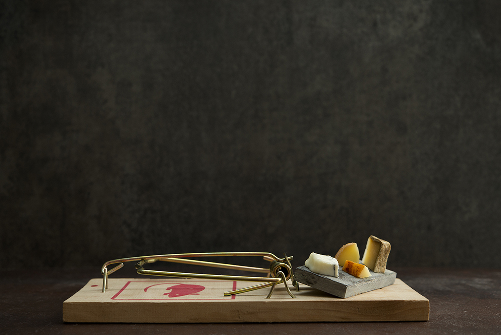 Мышеловки с гурманскими блюдами