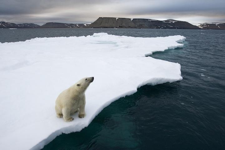 Антарктика в фотографиях Paul Souders