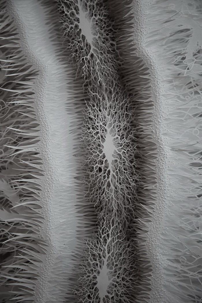 Бактерия, вырезанная из бумаги