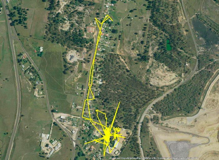 Куда ходит ваша кошка ночью: GPS-анализ похождений