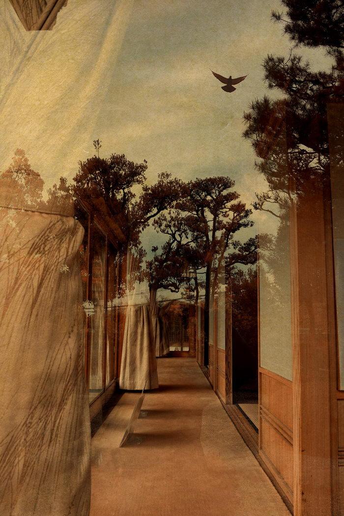 Абстрактные фотографии Angel Albarran и Anna Cabrera