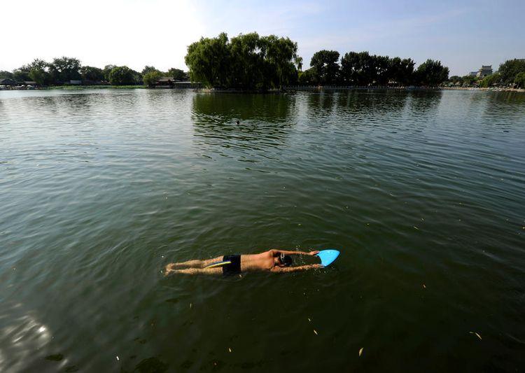 Лето 2010 - Как это было