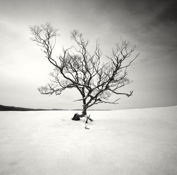 Черно-белая зима в снимках Hakan Strand