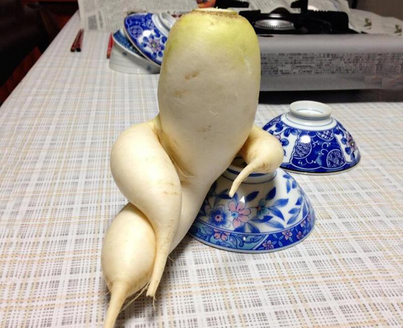Странные овощи, похожие на что-то другое
